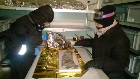Gletscherarchäologie: Ist da draußen noch ein Ötzi?