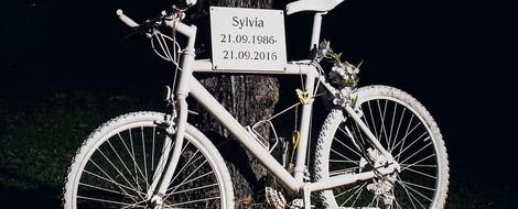 Reportage: Im toten Winkel - 163 Radfahrer starben in Deutschland einen verhinderbaren Tod.