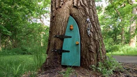 Im Wald der Gnome und Elfen