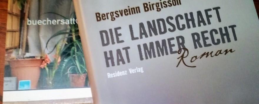 """Mein kleiner Buchladen: """"Debüts"""" – Die Landschaft hat immer Recht"""