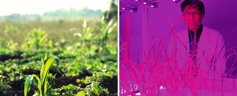 """Doku """"10 Milliarden"""" zeigt den Lebensmittelwahnsinn – aber auch Alternativen"""