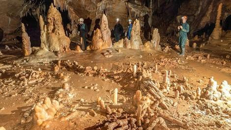 Der Neandertaler im neuen Licht