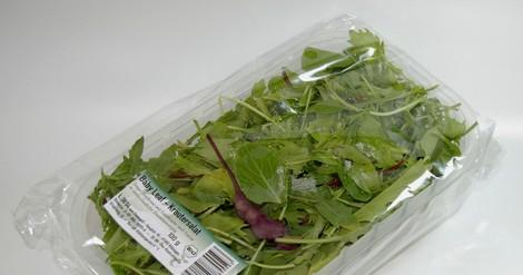 Sind biobasierte oder bioabbaubare Kunststoffe besser für die Umwelt?