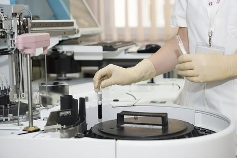 Sollten Forscher Chimären züchten dürfen?