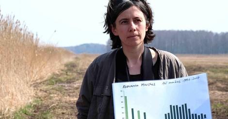 Moorbodenschutz im Klimapaket: Ein Langzeitspeicher für CO2