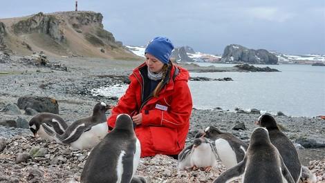 Abenteuer Antarktis - ein Jahr im ewigen Eis
