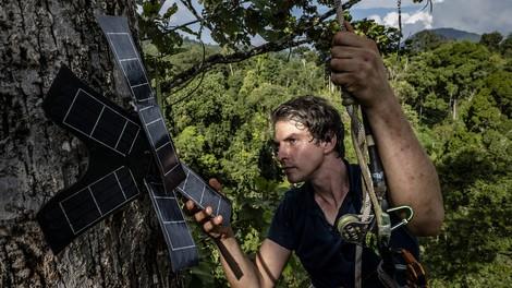 Mit alten Handys und smarter Software gegen illegale Abholzung
