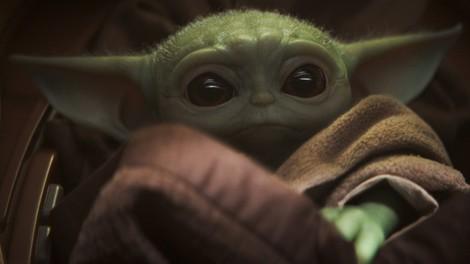 Werner Herzog liebt Baby Yoda. Zu Recht.