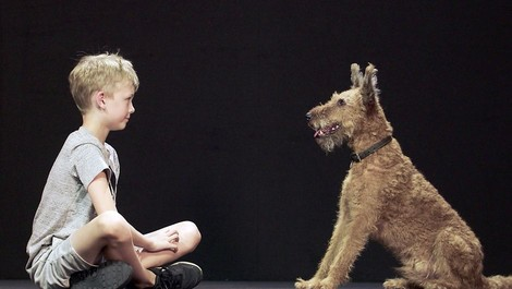 Hund und Mensch - das Geheimnis einer Freundschaft
