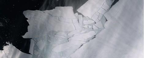 20,75 Grad Celsius: Neuer Wärmerekord in der Antarktis