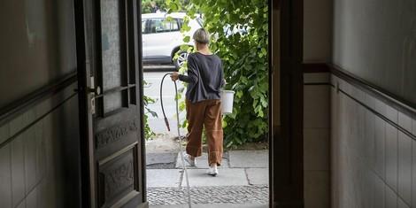 """Gieß den Kiez"": Dieses Projekt hilft Berlinerïnnen, Stadtbäume vor dem Austrocknen zu retten"