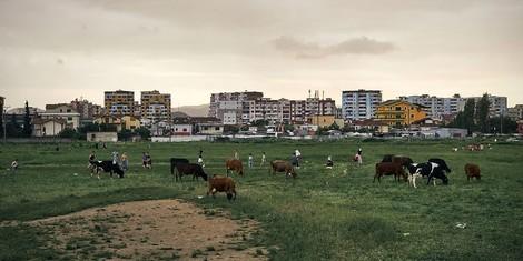 Warum Blutrache in Albanien weiterhin ein Problem ist