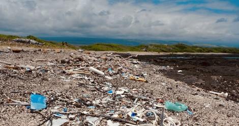 Plastik im Meer, ein ganz schön altes Problem