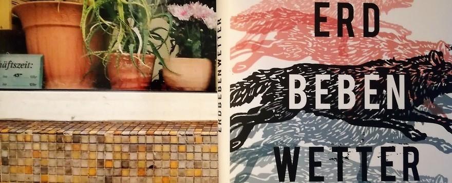 Mein kleiner Buchladen – Debüts: Erdbebenwetter