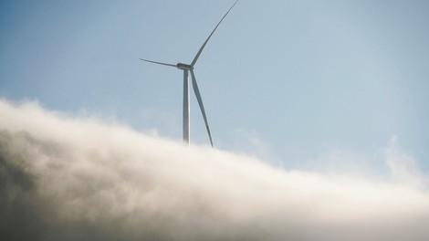 Wie Lobbyisten klimafreundliche Politik verhinderten