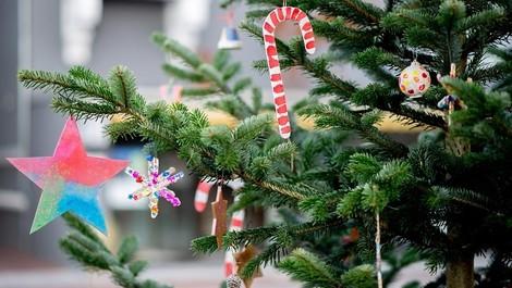 Wo dein Weihnachtsbaum herkommt