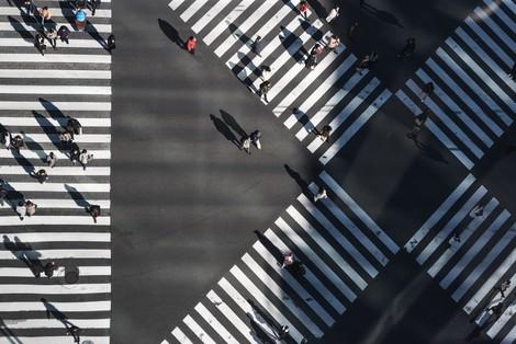 Zebras statt Einhörner: Wir brauchen Mobilitäts-Genossenschaften
