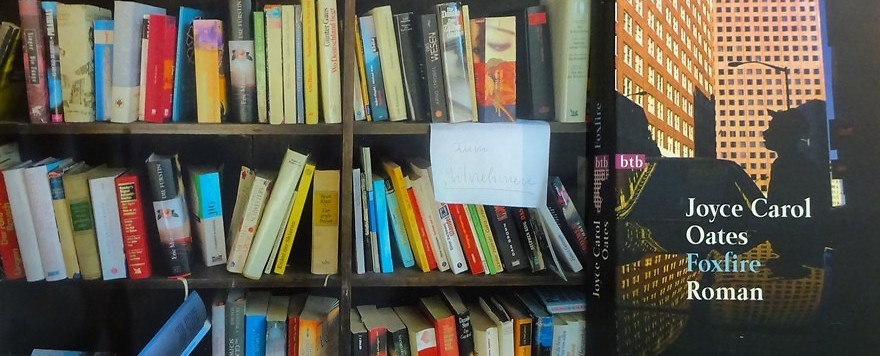 Bücherbox – Mädchenbanden: Foxfire