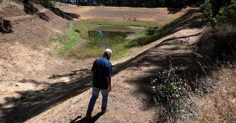 Wie der Klimawandel den Weinbau im Napa Valley bedroht