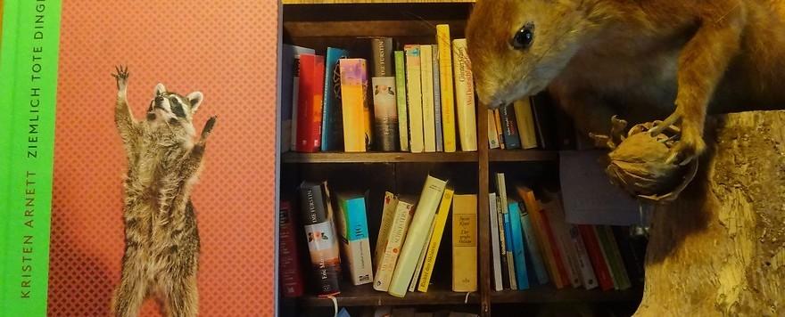 Bücherbox – Debüts: Ziemlich tote Dinge